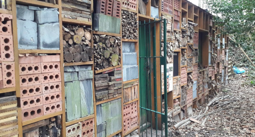 dulwich upper wood bug hotel
