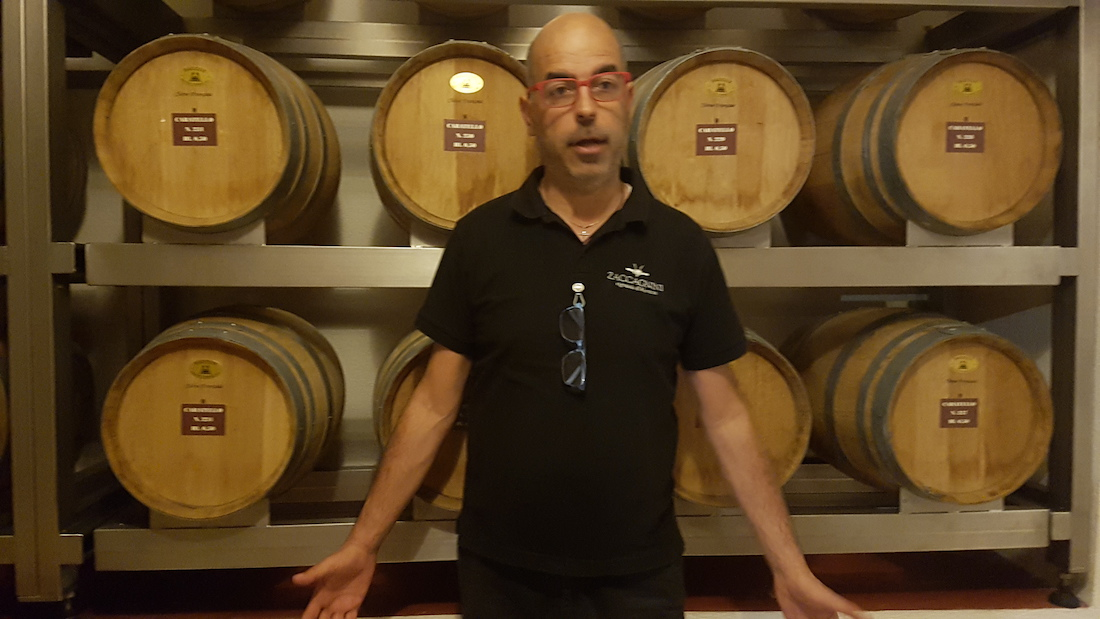 winemaker zaccagnini